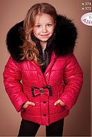 Куртка зимняя для девочки - без меха,  Baby Angel, р.122