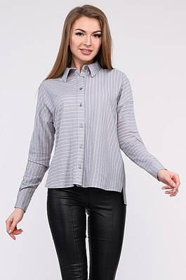 Рубашка BK-7688-4 XS