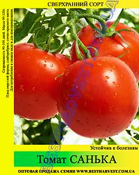 Насіння томату «Санька» 100 г