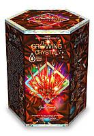 """Набор для проведения опытов """"Растущий кристалл"""", Danko Toys, GRK-01-06U"""