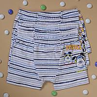 Детские трусы боксеры для мальчика Nicoletta (возраст: 2-3, 6-7 лет) | 5 шт.