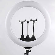 Кільцева LED лампа ZB-F488 55см діаметр | 3 кріплення телефону | Пульт ДУ