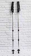 Трекинг палки для спортивной ходьбы телескопические (рукоять - пластик, Silver) палки скандинавские (TI)