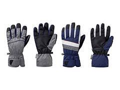 Перчатки мужские лыжные 9 Crivitpro