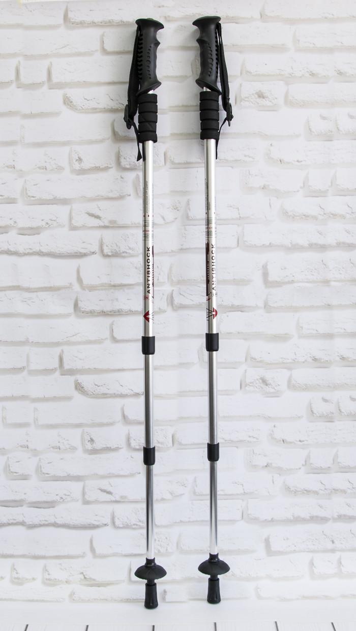 Трекинг палки для спортивной ходьбы телескопические (рукоять - пластик, Silver) палки скандинавские (GK)