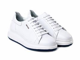 Кросівки Etor 6308-203  білий