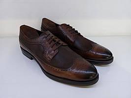 Броги Etor 14506-7376-275 коричневі