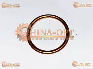 Прокладка приемной трубы (S11, кольцо)