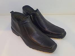 Черевики Etor 2199-462 чорний