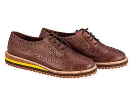 Броги Etor 3297-55 коричневий