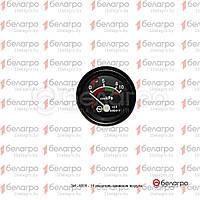 ЕІ-8009-11 Покажчик тиску повітря МТЗ-320, (А)
