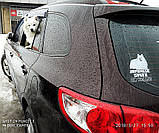 Автомобильная наклейка на стекло Японский шпиц на борту (Japanese Spitz on board sticker), фото 2
