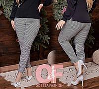 Молодежные женские брюки с 42 по 54 р. СЕР1270, фото 1