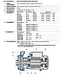 Центробежный насос для воды промышленный Pedrollo 2CP 40/180A, фото 4
