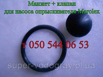 Ремкомплект для насоса опрыскивателя Marolex (Маролекс) 2 ед.