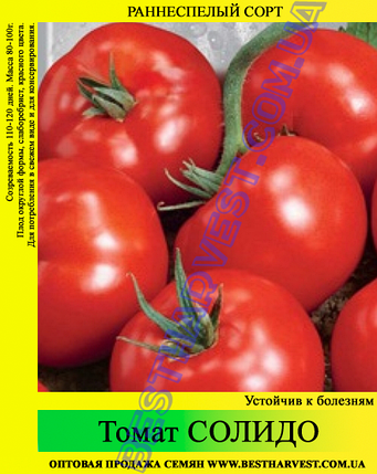 Семена томата Солидо 0,5 кг, фото 2