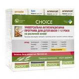 Чойс (Choice) - Комплексная антивирусная программа, активизация иммунитета, фото 2