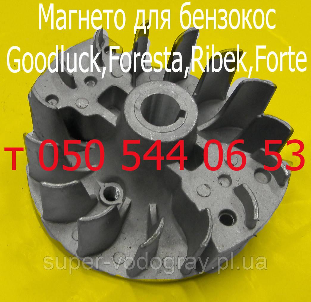 Магнето-маховик для бензокосы Goodluck,Foresta,Ribek,Forte
