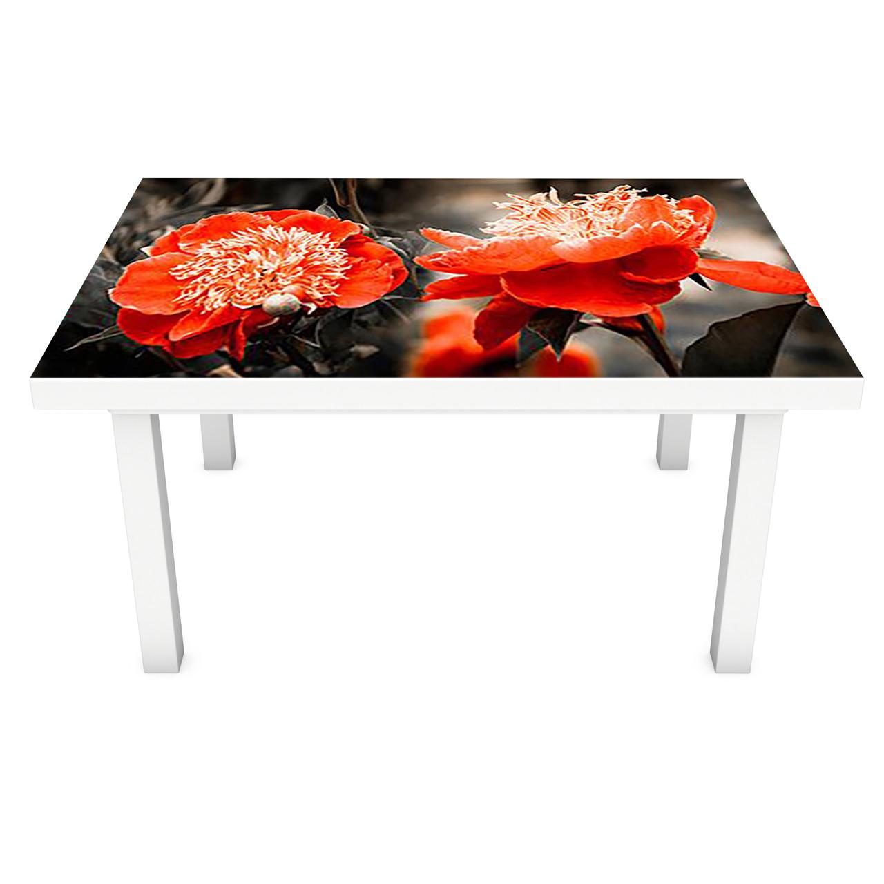 Наклейка на стіл вінілова Червоні півонії 02 ПВХ плівка для меблів інтер'єрна 3D квіти чорний 600*1200 мм