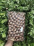 Макадамия орех экзотический вакум 1 кг, фото 3