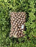 Макадамия орех экзотический 1 кг вакуум, фото 6