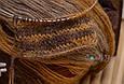 Alize Batik Angora Gold, №6277, фото 6