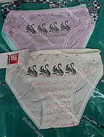 Трусики для дівчинки, фото 1
