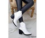 Зимние ботинки казаки питон, фото 7