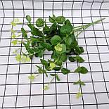 Эвкалипт букет зеленый и голубой 52 см, фото 3