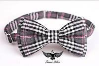 Бабочка серо-бело-розовая шотландка
