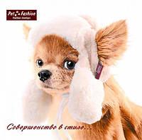 """Шапка Pet Fashion """"УШАНКА"""""""