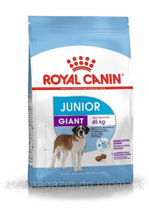 Royal Canin Giant Junior для щенков до 18/24 месяцев 15 кг