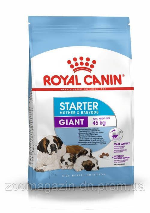 Royal Canin Giant Starter  для щенков в период отъема до 2-месяцев  1 кг