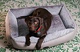 Лежак Harley and Cho Sofa Wolf Mocca, бежевый/коричневый,  М, 70х50 см, фото 3