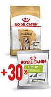 Корм Royal Canin Bulldog Adult, для Бульдогов от 12 месяцев, 12 кг + ПОДАРОК лакомство