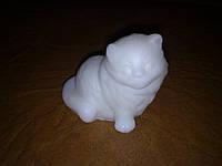 Котик 3D