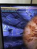 Видеокарта PALIT GeForce GT710 1GB Silent низкопрофильная, фото 4