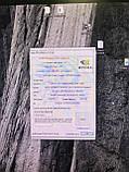 Видеокарта PALIT GeForce GT710 1GB Silent низкопрофильная, фото 5