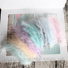 Разноцветные перья нежных оттенков 10-15 см 10 шт.