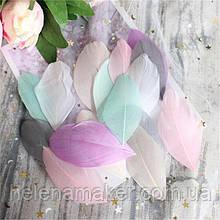 Разноцветные перья нежных оттенков 4-8 см 10 шт.