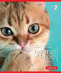 Зошит для записів А5/18 кл. YES ANIMAL MACRO мат. ВДЛ+фольга срібло 764267