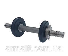 Гантель наборная АРМАЛІТ-2015 4 кг