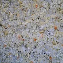 Фотозона з білих штучних квітів.