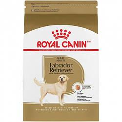 Корм Royal Canin Labrador Retriever Adult Роял Канін Лабрадор Ретрівер Едалт 3кг