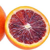 """Апельсин кровавый """"Сангвинелли"""" (C. sinensis """"Sanguinelli"""") до 20 см. Комнатный"""