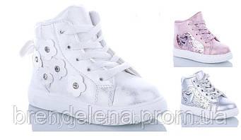 Стильні черевички для дівчинки р26-29 ( код 0571-00)