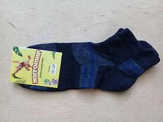 Носочки детские хлопковые  Житомир размер 18-20(30-34)