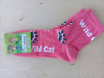 Носочки детские хлопковые  Червоноград для девочек размер 20(32-34)
