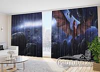 """Фото Шторы """"Дракон на планете"""" 2,7м*4,0м (2 полотна по 2,0м), тесьма"""