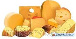 Готовим дома сыр - Качотта